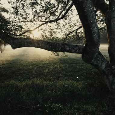 Photo by Josh Sorenson on Pexels.com